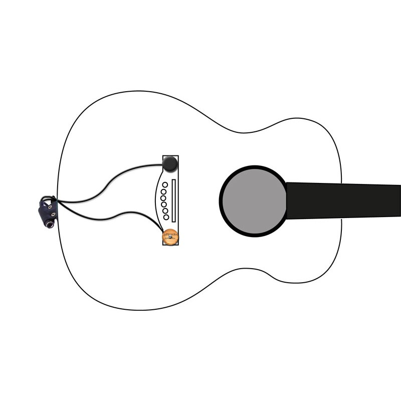 acoustic guitar pickups peterman acoustic dual acoustic guitar pickup · diagram
